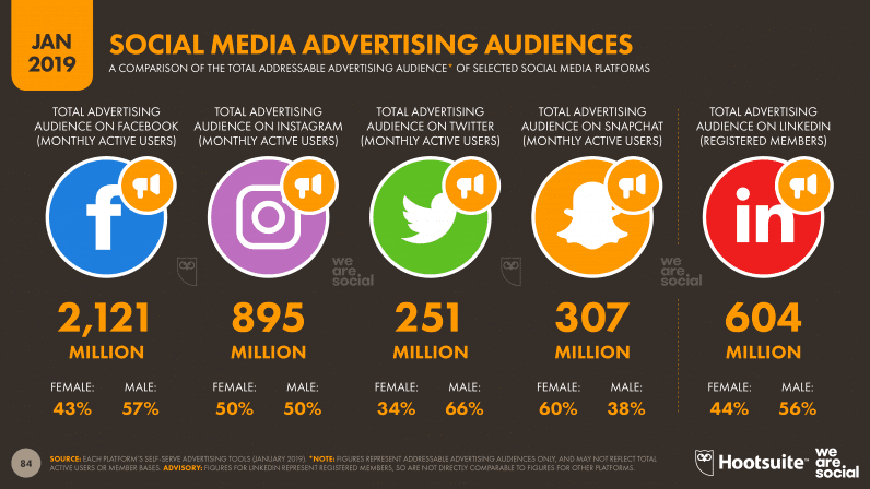 Social Media Advertising Audience